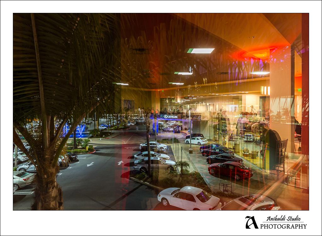 event photographer vintana lexus centre