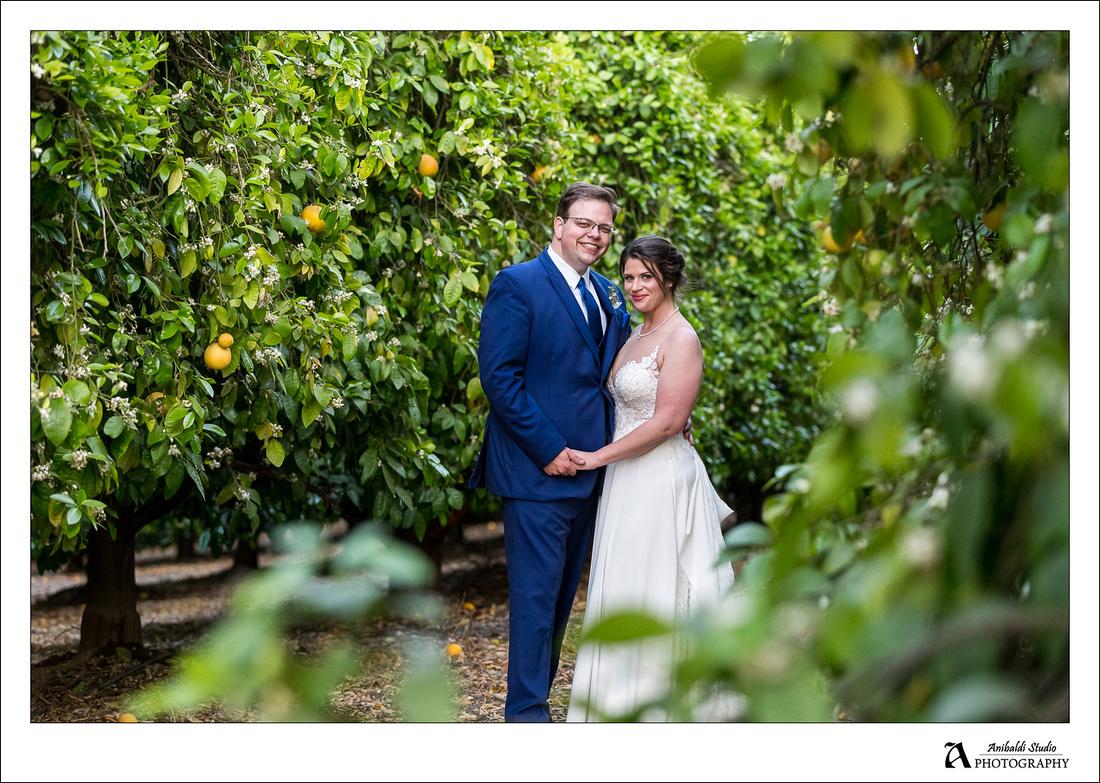 temecula citrus wedding photo