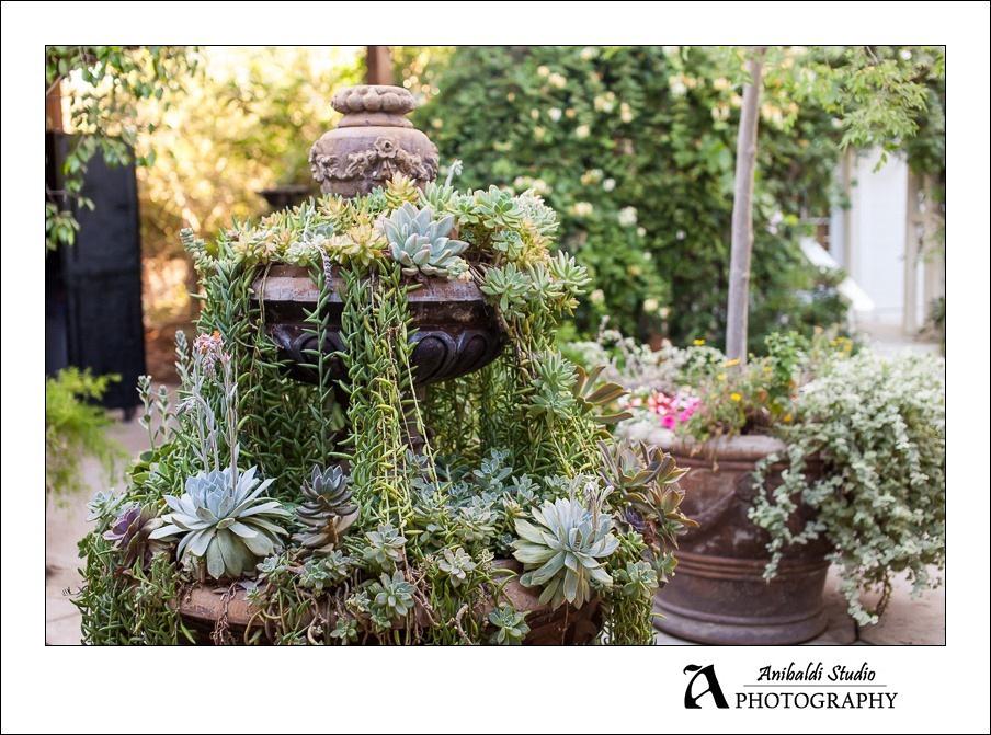 twin oaks house and garden wedding photographer 061